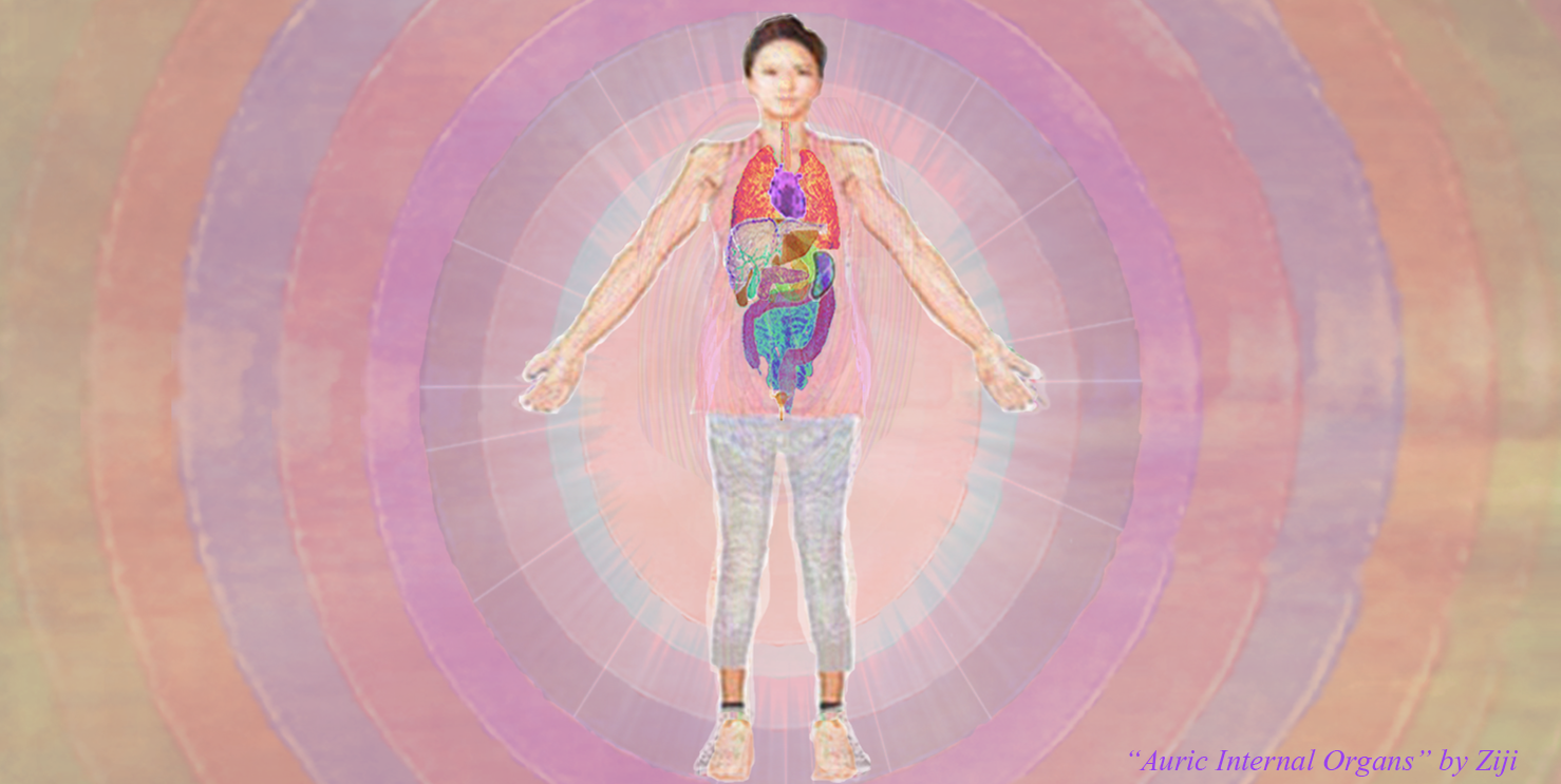 Internal Organs Underlying Auric Achitecture