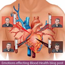 Emotions Effecting Blood Health Healing Blog