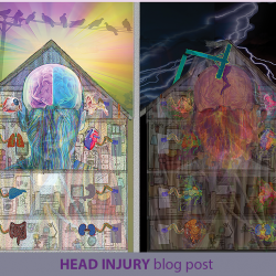 House Wiring Head Trauma Healing Blog