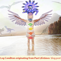 Leg Condition Bird Kachina Healing Blog